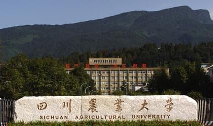 四川农业大学自考