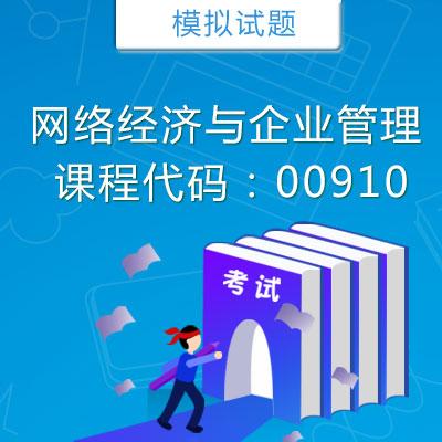 00910网络经济与企业管理模拟试题