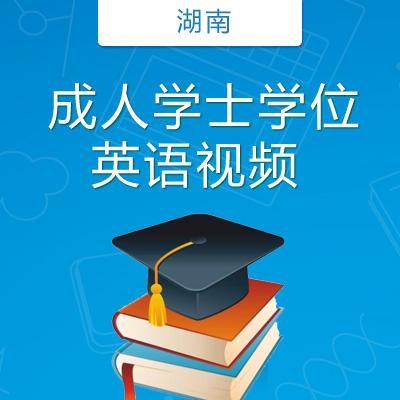 湖南学士学位英语