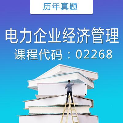 02268 电力企业经济管理历年真题