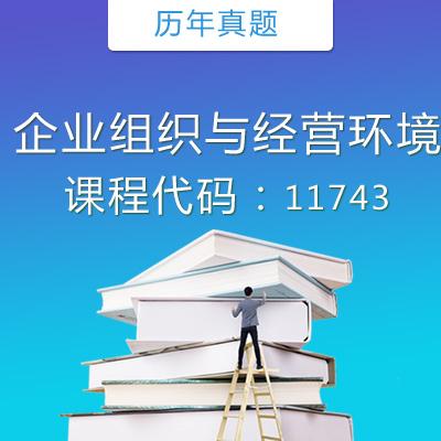 11743企业组织与经营环境历年真题