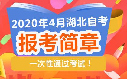 湖北省自考官网公布:2020年4月湖北自考报名报考简章