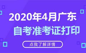 2020年4月广东自考准考证打印