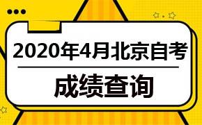2020年4月北京自考成绩查询