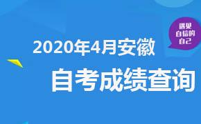 2020年4月安徽自考成绩查询