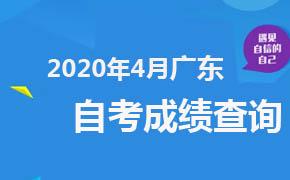 2020年4月广东自考成绩查询