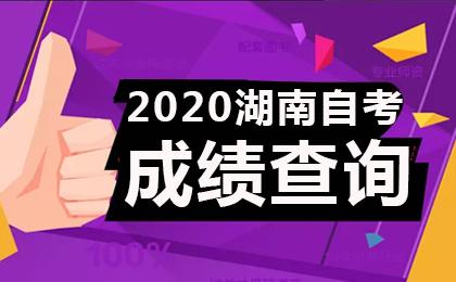 2020年10月湖南自考成绩查询时间及入口