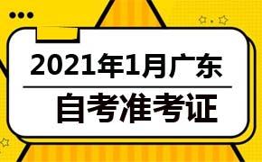2021年1月广东自考准考证打印